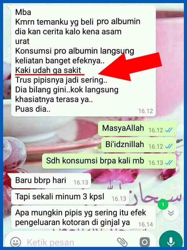 Review Kapsul Pro Albumin Asli Serta Efek Sampingnya