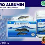 Jual Pro Albumin Untuk Penyembuhan Luka di Seluma