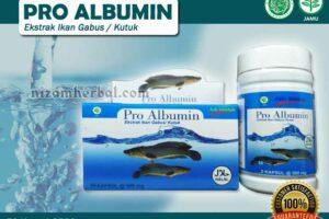 Jual Pro Albumin Untuk Penyembuhan Luka di Tana Toraja