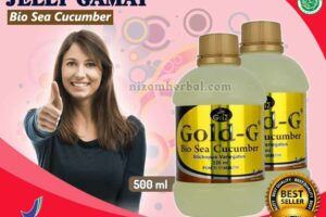 Jual Gold G Bio Sea Cucumber di Lolak