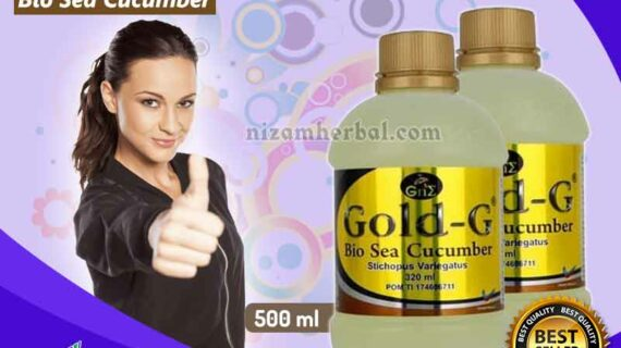 Jual Gold G Bio Sea Cucumber di Pekalongan