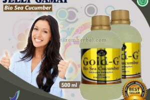 Jual Gold G Bio Sea Cucumber di Minahasa