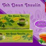 Jual Teh Daun Insulin Untuk Diabetes di Mojosari