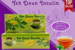 Jual Teh Daun Insulin Untuk Diabetes di Purworejo