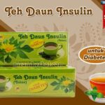 Jual Teh Daun Insulin Untuk Diabetes di Barito Kuala
