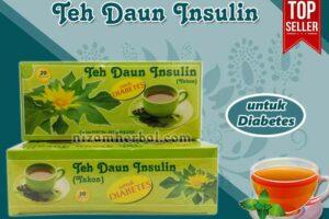 Jual Teh Daun Insulin Untuk Kanker di Bengkulu Utara