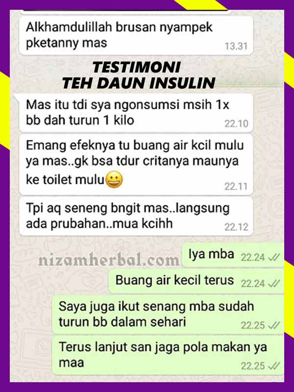 Jual Teh Daun Insulin Untuk Kanker di Barito Kuala